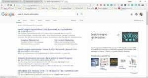 organic search engine opitmization