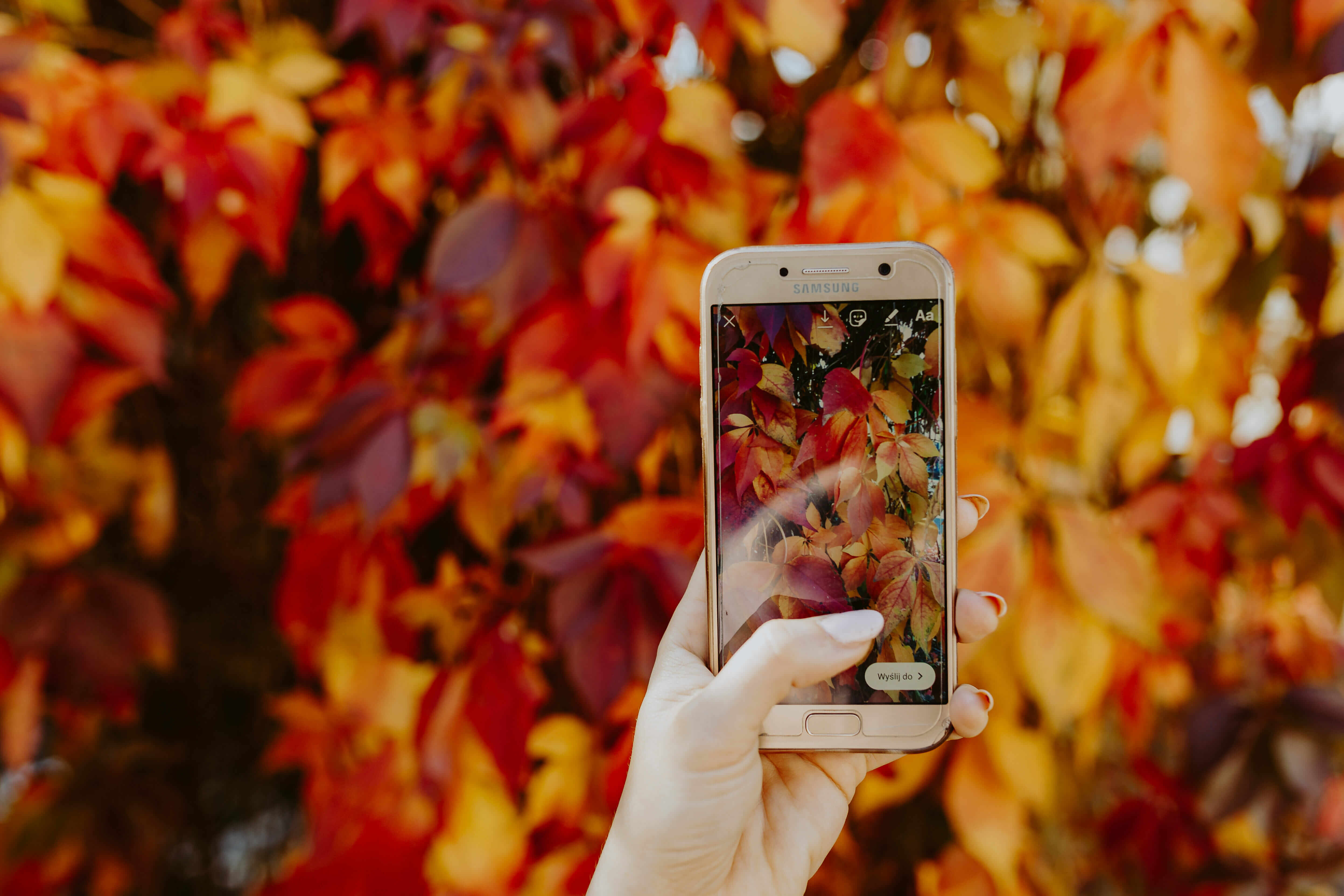 Pinterest Marketing Tool Tailwind Now Rocking Instagram Marketing