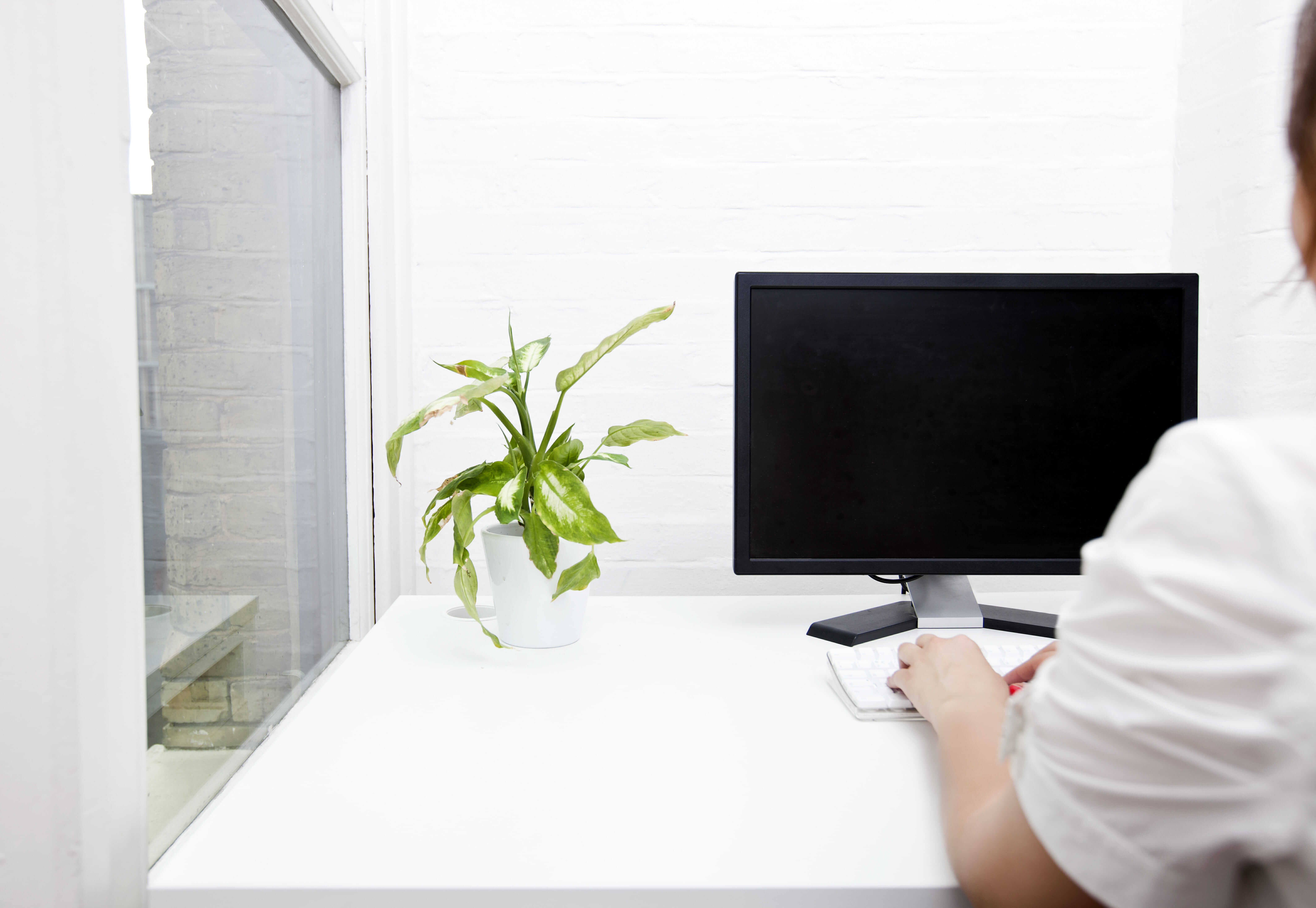 woman looking at desktop computer